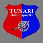 Tunari