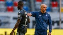 Hoffenheim se sépare d'Alfred Schreuder