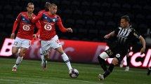 Lille : un amical contre Waasland-Beveren pour débuter