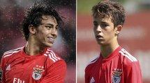 Benfica : Hugo, l'autre joyau de la famille Felix