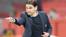 Le Bayer Leverkusen de Gerardo Seoane, le nouvel animateur de la Bundesliga
