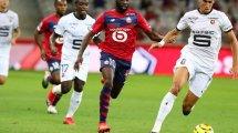 Ligue 1 : le LOSC et le Stade Rennais se neutralisent