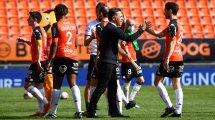 FC Lorient : comment les Merlus ont retrouvé la ligne