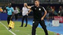Algérie : Djamel Belmadi dément pour Luca Zidane