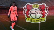 Une finale entre Dortmund et Leverkusen pour Abdoulaye Kamara