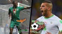 Zambie - Algérie : les compositions officielles