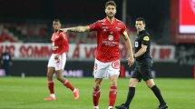Brest : rupture du ligament croisé pour Paul Lasne