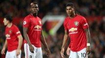 Man United : Ander Herrera encense Pogba, Martial et Rashford