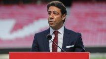 Rui Costa est le nouveau président du Benfica