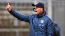 Sebastian Hoeness nouvel entraîneur d'Hoffenheim