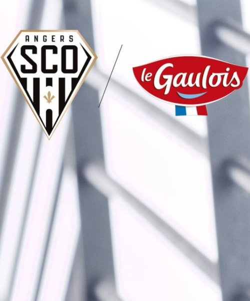 Le Sco d'Angers et Le Gaulois prolongent !
