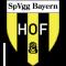 Bayern Hof