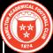 Hamilton Academicals FC