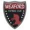 Wexford Youths Women's Academy AFC