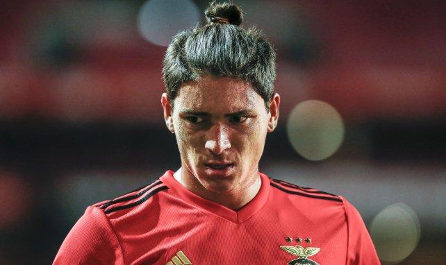 Darwin Nuñez sous le maillot de Benfica