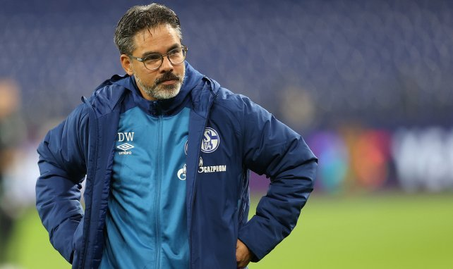 Schalke 04 : David Wagner limogé