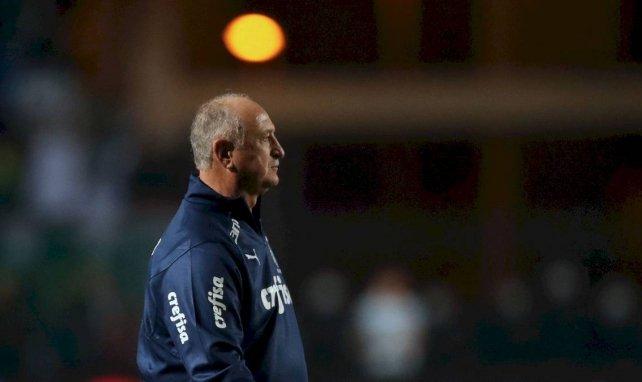 Luiz Felipe Scolari quitte Cruzeiro