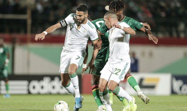 Riyad Mahrez lors d'un match face à la Zambie