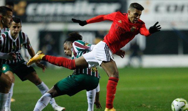 Pedrinho, ici avec le maillot de Benfica