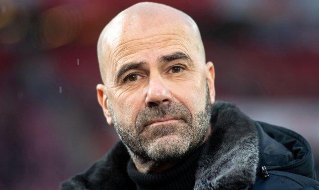 Peter Bosz trainierte zuletzt Bayer Leverkusen